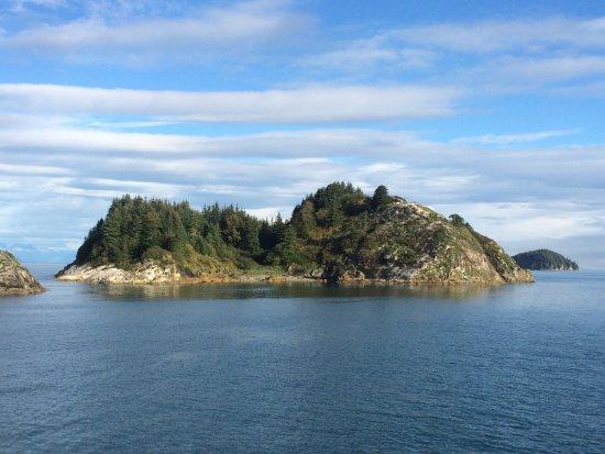 Gustavus, AK: On glacier bay boat tour led by a park ranger
