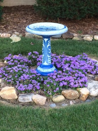 Azalea Inn Bed and Breakfast: Walk around back and you will see this adorable bird bath and an antique bath tub full of flower