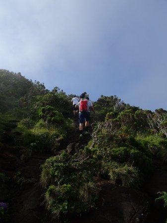 Pico Mountain (Montanha do Pico) : Uma memória para a vida