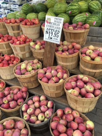 Kalkaska, MI: apple season