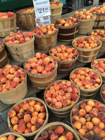 Kalkaska, MI: large amount of peaches