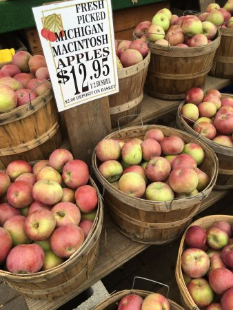 Kalkaska, MI: large amount of apples