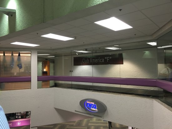 MIA Central Terminal Gallery