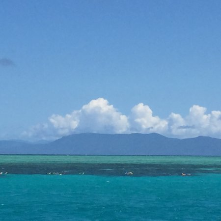 Reef Daytripper: View of the reef as we returned to port