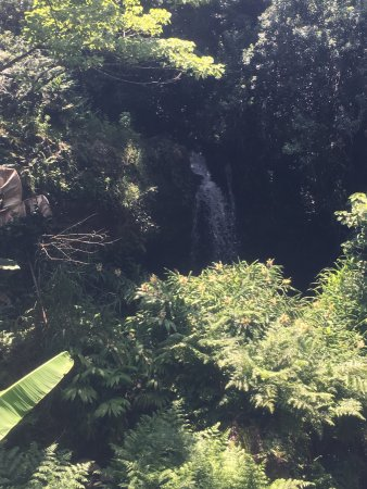 Hawi, HI: photo5.jpg