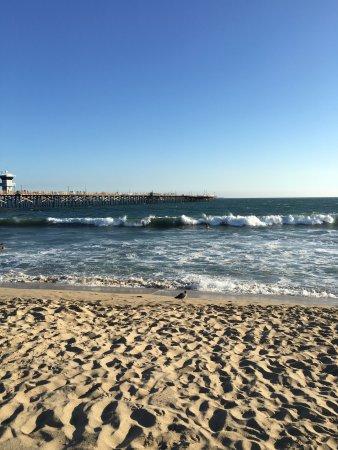 Seal Beach, CA: Было холодно)) но я поздно пришла.