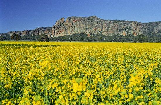 Grampians, Australien: Mt Arapiles