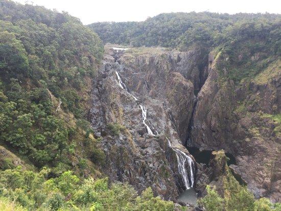 World Heritage Kuranda Tour-AAO: photo1.jpg