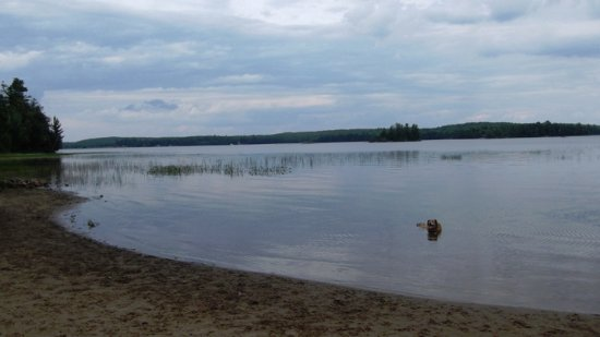 Mikisew Provincial Park: The dog park is spacious, fenced in and beautiful. It's the best part of the park.