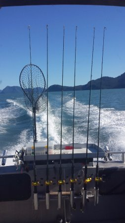 ProFish-n-Sea Charters: View from the boat