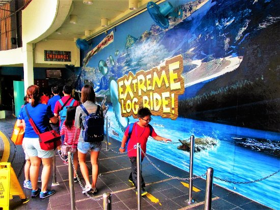 Sentosa 4D Adventureland : Exciting and amazing