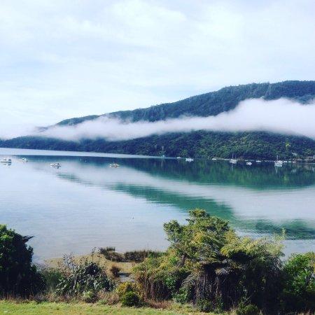 Anakiwa, Nowa Zelandia: photo5.jpg