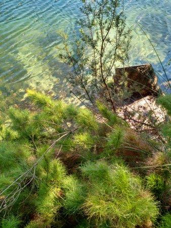 North Stradbroke Island, Australien: Down by the water at Blue Lake