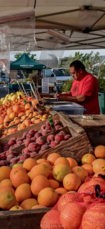 Farmer's Markets in Napa: Early morning before the rush