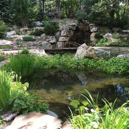 picture of betty ford alpine gardens vail tripadvisor. Cars Review. Best American Auto & Cars Review