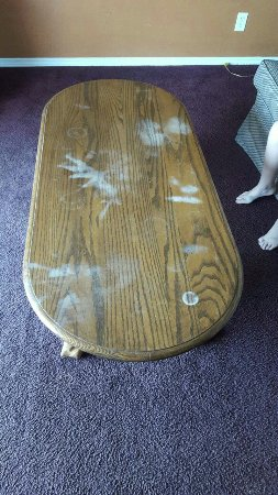 Ocean Shores, WA: Don't stay here, seriously. Torn and stained carpet, coffee table looks like a meth lab bust evi