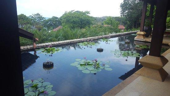 Pimalai Resort and Spa: 20160911_095525_large.jpg