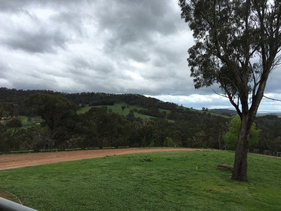Lilydale, Australien: photo5.jpg