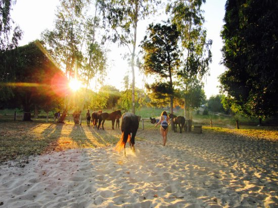 Foto de Nkhata Bay