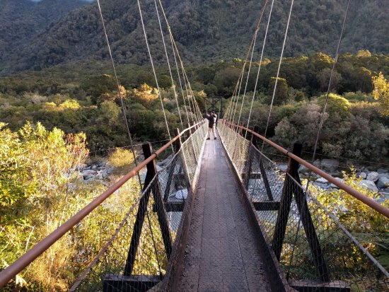 Westland National Park (Te Wahipounamu), Nouvelle-Zélande : The Bridge
