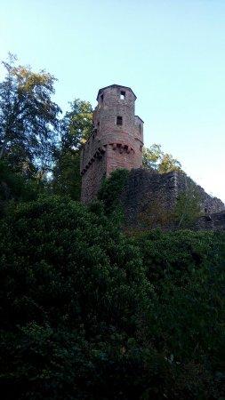 Neckarsteinach, Alemania: Hinterburg
