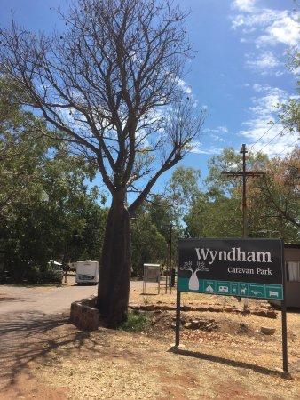 Wyndham Caravan Park: photo0.jpg