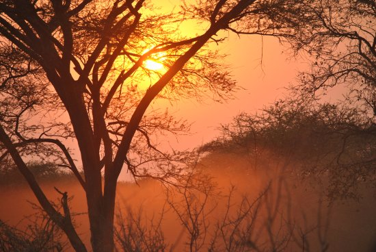 Matetsi Private Game Reserve: African sunrise and sunsets