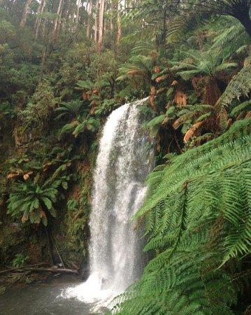 Beauchamp Falls: waterfall