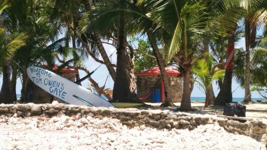 ReefCI : Perfect intro to my favourite island, Tom Owen's Caye. I can't wait to go back.