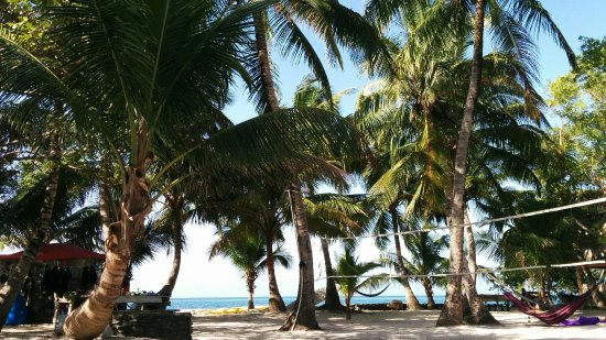 Placencia, Belize: Volleyball, hammocks, tropical sun. What more could you want?