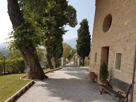 Relais Villa Fornari Hotel Ristorante: 20160912_112412_large.jpg