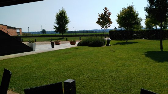 Quattordio, Италия: IMG_20160909_141630_large.jpg