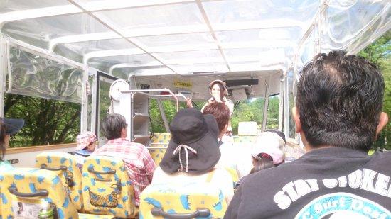 Kaba Bus: 開放的な車内