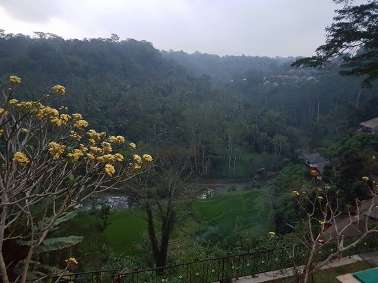 Puri Bunga Resort and Spa: 20160831_202737_large.jpg