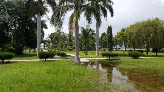 Nehru Park: Water logging on foot path