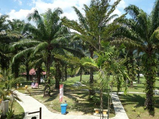 Felda Residence Hot Springs: Felda residence sungkai