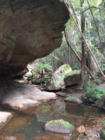 Monto, ออสเตรเลีย: photo5.jpg
