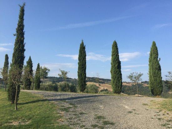 Pomarance, Italia: Strepitosamente fantastico Immerso nella natura Toscana dove regna la pace e la tranquillità