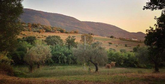 Albanella, إيطاليا: il paesaggio circostante