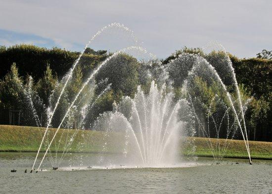 Le bassin du miroir photo de le jardin de versailles for Bassin miroir