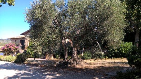 Foto de Borgo de' Salaioli