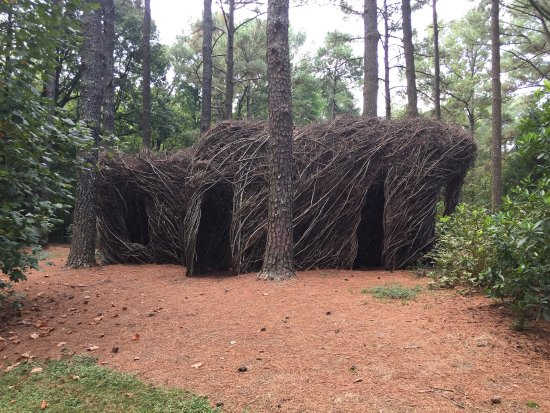 Picture Of Cape Fear Botanical Garden