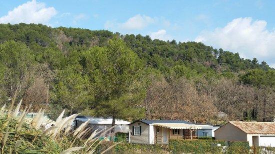 Callas, France: camping arboré
