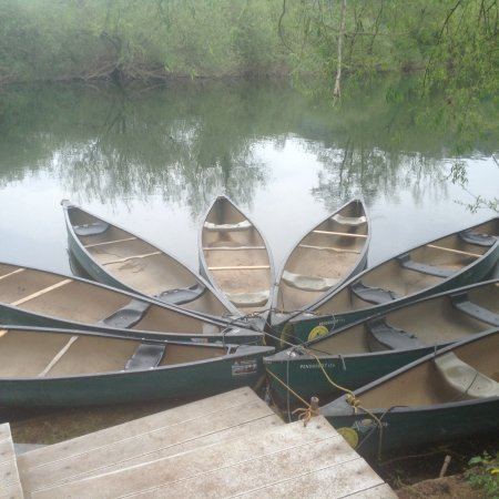 Symonds Yat, UK: Canoes moored up ready to go