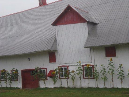 Chemin Royal (Royal Road) : Scenic barn; Ile d'Orleans