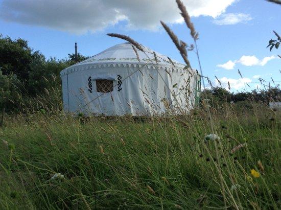 Pilsdon View Camping