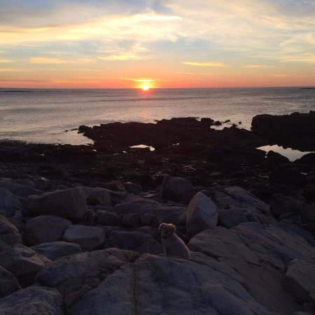 Winter Harbor, เมน: Taken at Blueberry point on Schoodic peninsula at 5:46am