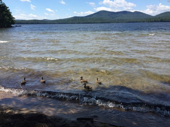 Long Lake, NY: photo1.jpg