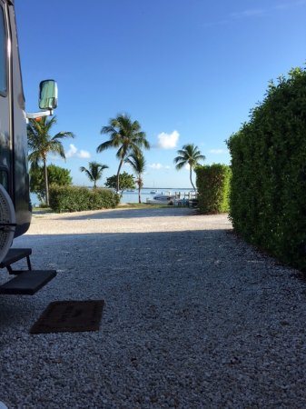 Point of View Key Largo RV Resort : View from our site most of the week.
