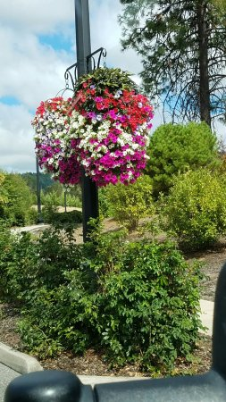 Canyonville, Oregon: Absolutely  beautiful  RV park